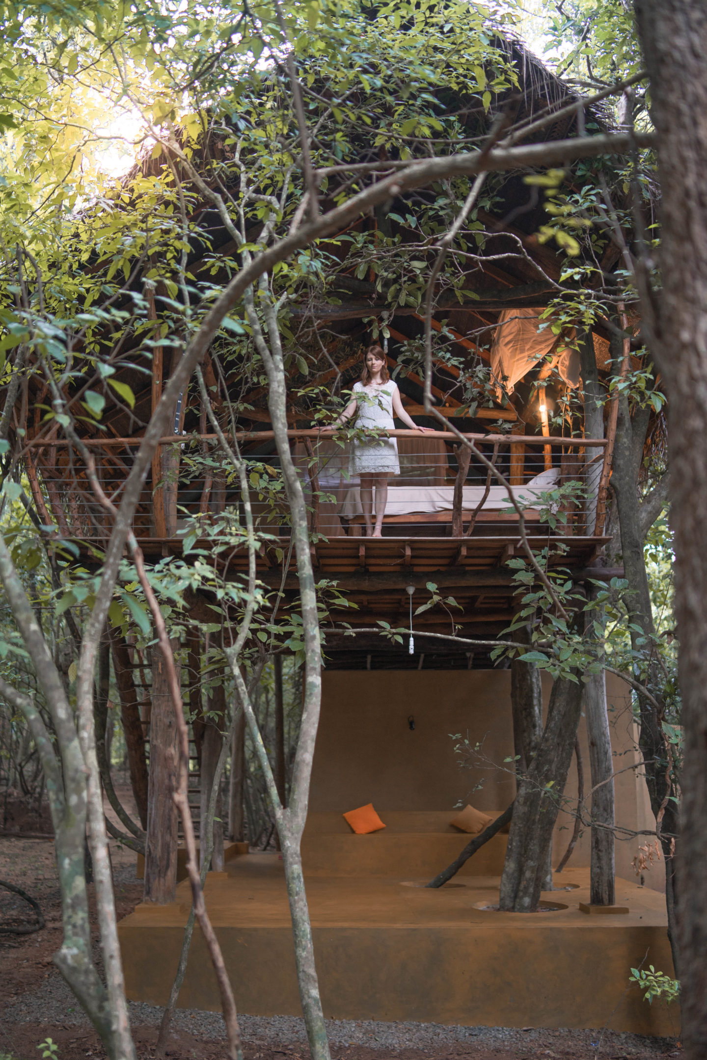 Tree House Life In Sigiriya Andshexplores
